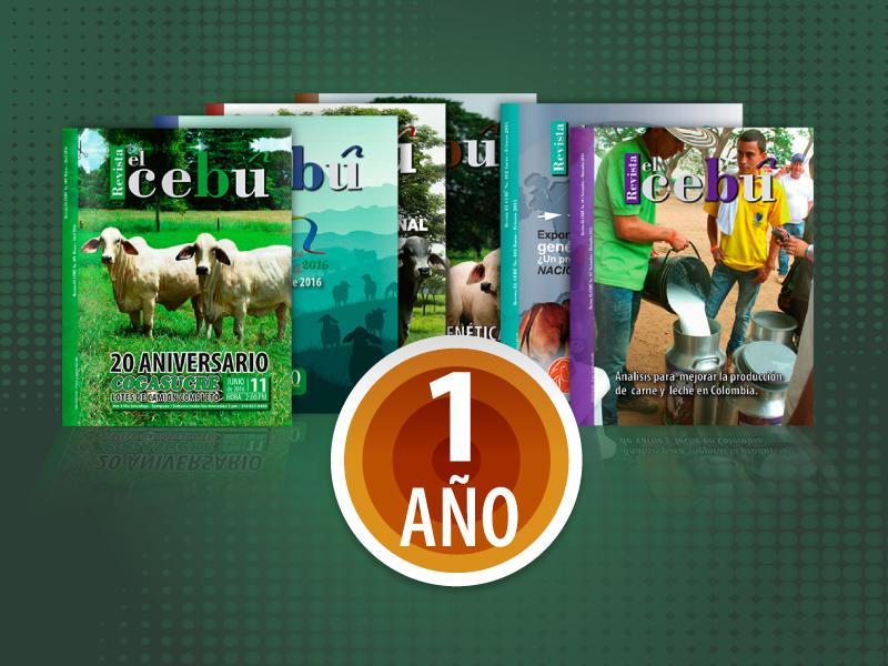 Revista el Cebú X 1año