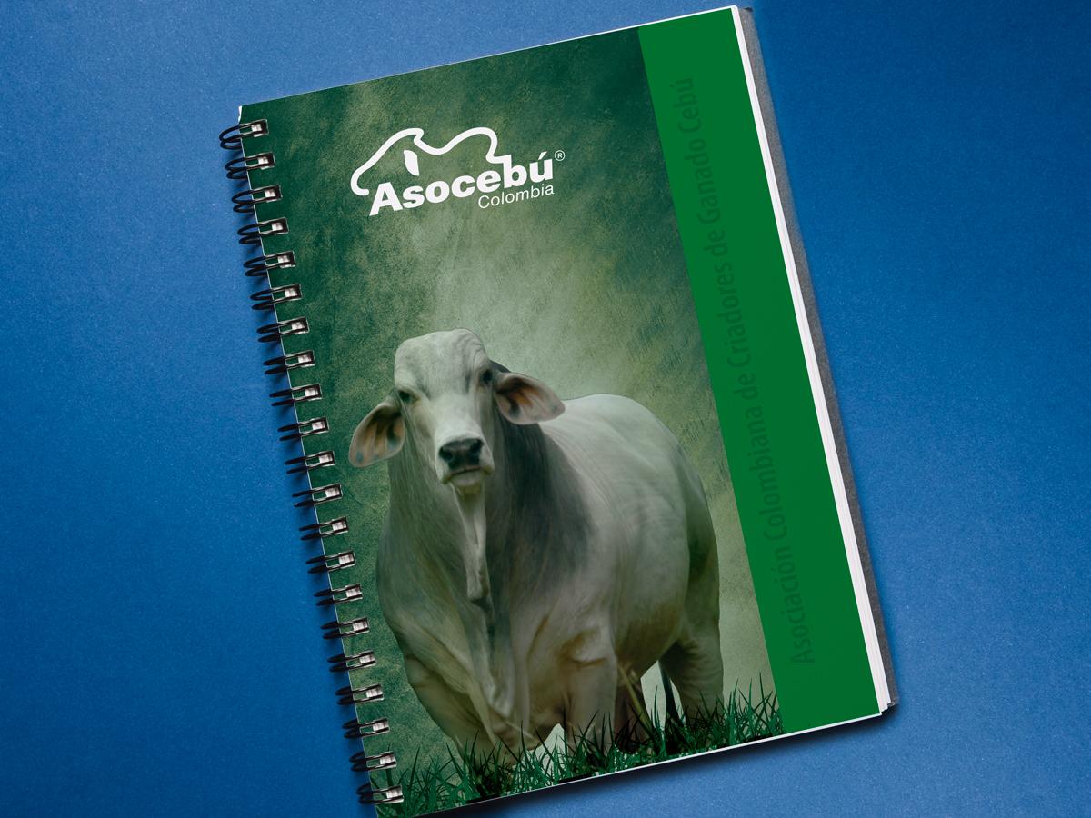 Cuaderno Brahman $29.000