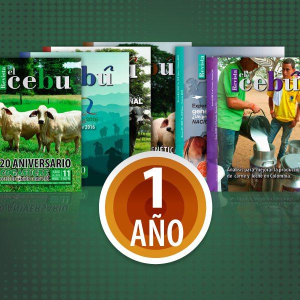 revista-1