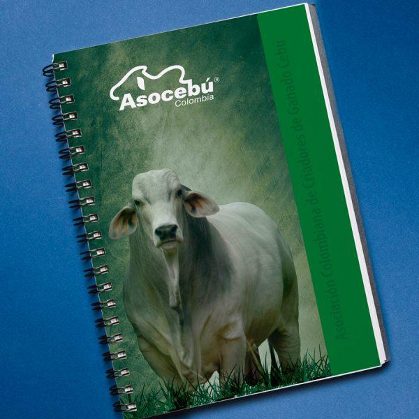 CuadernoBrahman