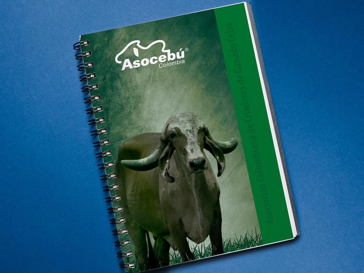 Cuaderno Gyr
