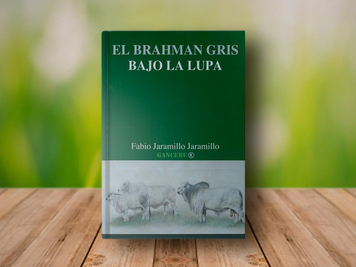 El Brahman Gris bajo la lupa