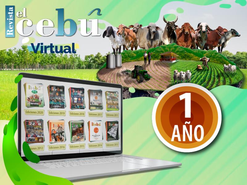Revista el Cebú Virtual X 1 años