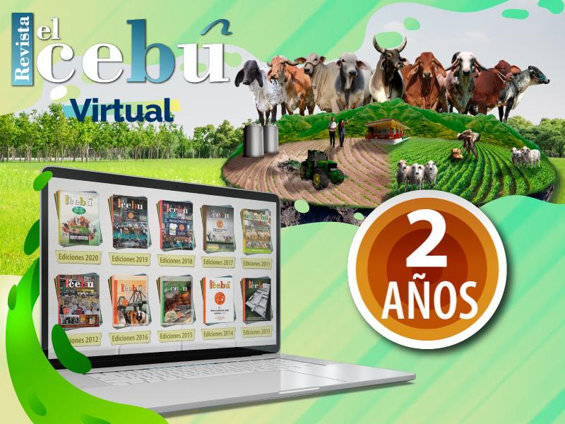 Revista el Cebú Virtual X 2 años