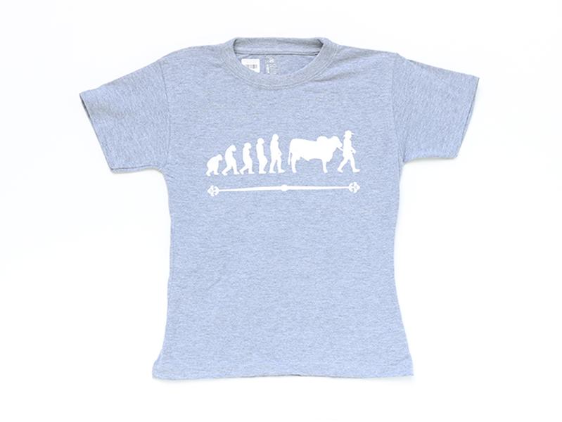 Camiseta evolución Gris $25.000